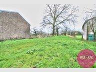 Terrain constructible à vendre à Sivry-la-Perche - Réf. 7083751