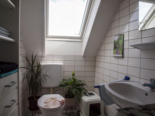 wohnung mieten 2 zimmer 55 m² bollendorf foto 4