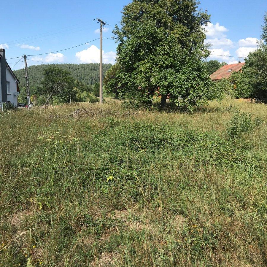acheter terrain constructible 0 pièce 0 m² taintrux photo 1