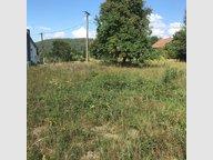 Terrain constructible à vendre à Taintrux - Réf. 6531831