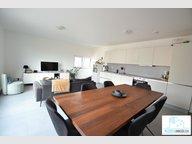 Duplex for rent 2 bedrooms in Bertrange - Ref. 6923272