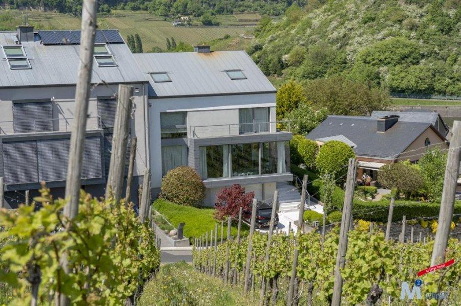 detached house for buy 5 bedrooms 340 m² machtum photo 4
