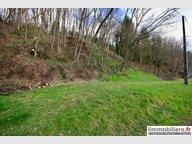 Terrain constructible à vendre à Pair-et-Grandrupt - Réf. 6722840