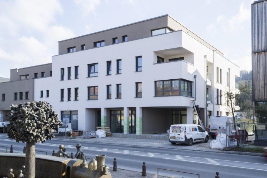 acheter local commercial 0 chambre 195 m² diekirch photo 1
