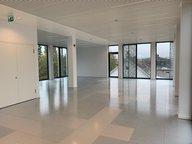 Bureau à louer à Strassen - Réf. 6999320