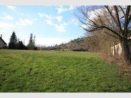 Terrain constructible à vendre à Saint-Dié-des-Vosges - Réf. 6291224