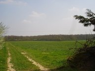 Terrain constructible à vendre à Cuvry - Réf. 5456424