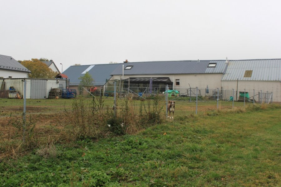 acheter corps de ferme 5 chambres 226 m² consthum photo 2
