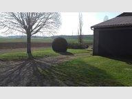 Ferme à louer F2 à Montigny-sur-Chiers - Réf. 6535464