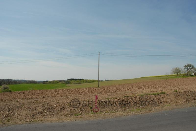 Bauland zu verkaufen in Altscheid