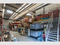 Entrepôt à louer à Luxembourg-Gasperich - Réf. 7103800