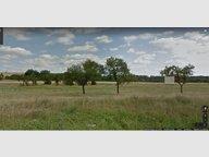 Terrain constructible à vendre à Hatrize - Réf. 6694712