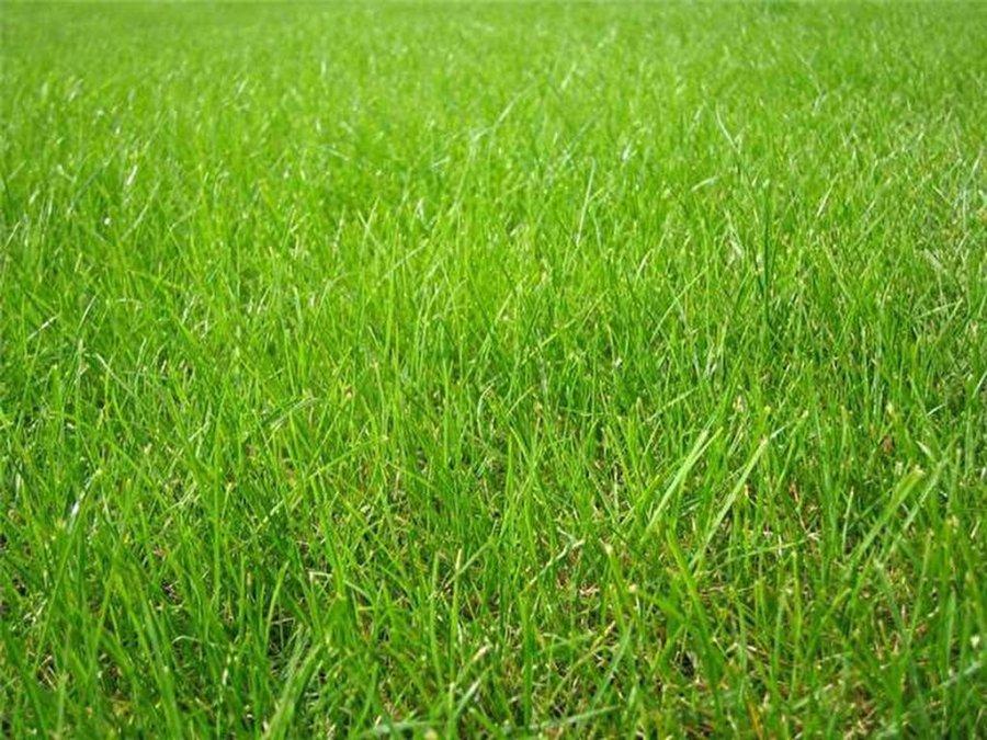 acheter terrain constructible 0 pièce 0 m² cordemais photo 1