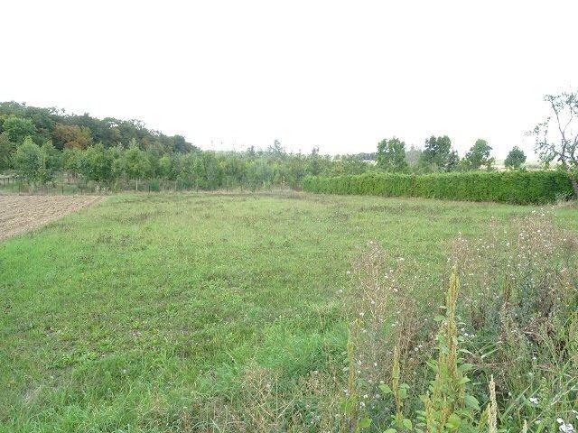 Terrain constructible à vendre à Halstroff