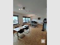 Bureau à louer 3 Chambres à Luxembourg-Limpertsberg - Réf. 6693960