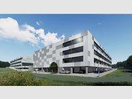 Entrepôt à louer à Luxembourg-Centre ville (Cloche-d'Or) - Réf. 7231816