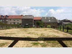 Haus zum Kauf 4 Zimmer in Launstroff - Ref. 4915288
