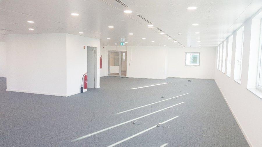 louer bureau 0 chambre 350 m² luxembourg photo 3