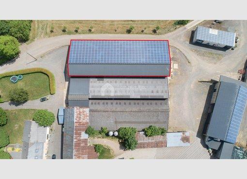 Warehouse for rent in Leidenborn (DE) - Ref. 7026008