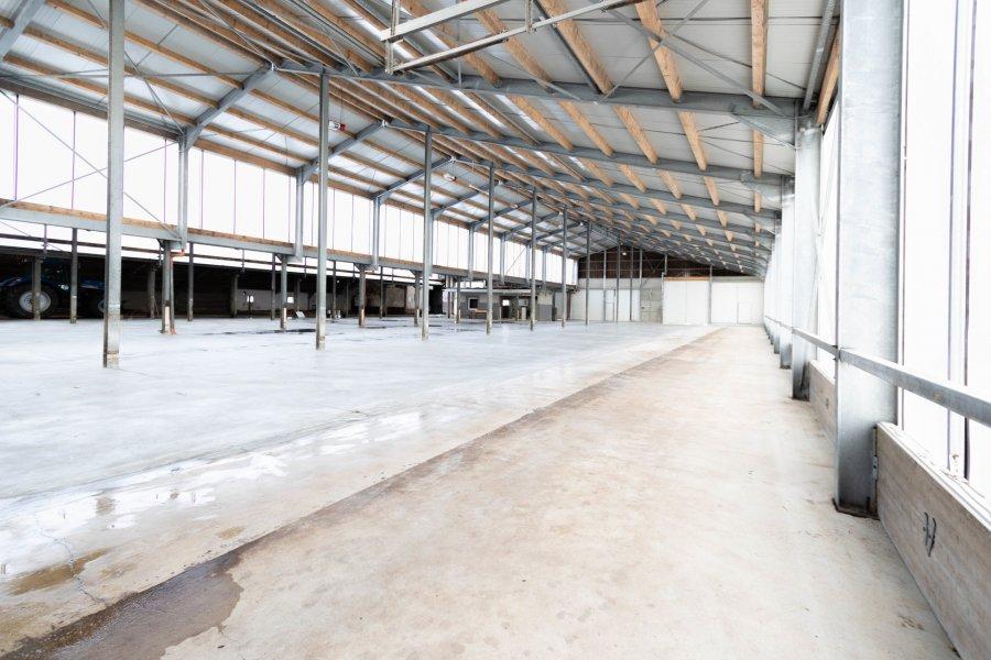lagerfläche mieten 0 zimmer 1100 m² leidenborn foto 2
