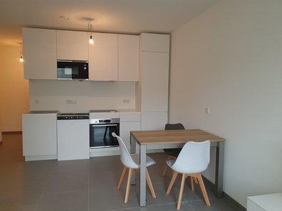 Wohnung zur Miete 1 Zimmer in Luxembourg-Gare - Ref. 6643032