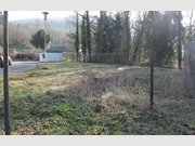 Gewerbliches Grundstück zur Miete in Bollendorf - Ref. 5147992