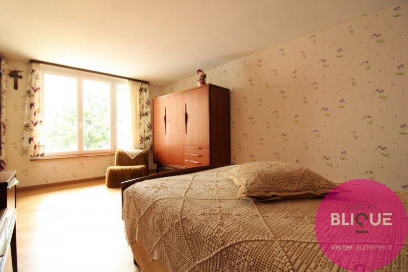 acheter maison 9 pièces 380 m² blainville-sur-l'eau photo 6