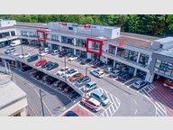 Local commercial à louer à Echternach - Réf. 6010472