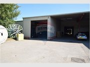 Warehouse for rent in Bertrange - Ref. 6403944