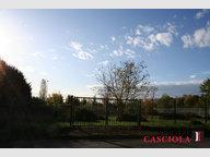 Terrain constructible à vendre à Solgne - Réf. 6618984
