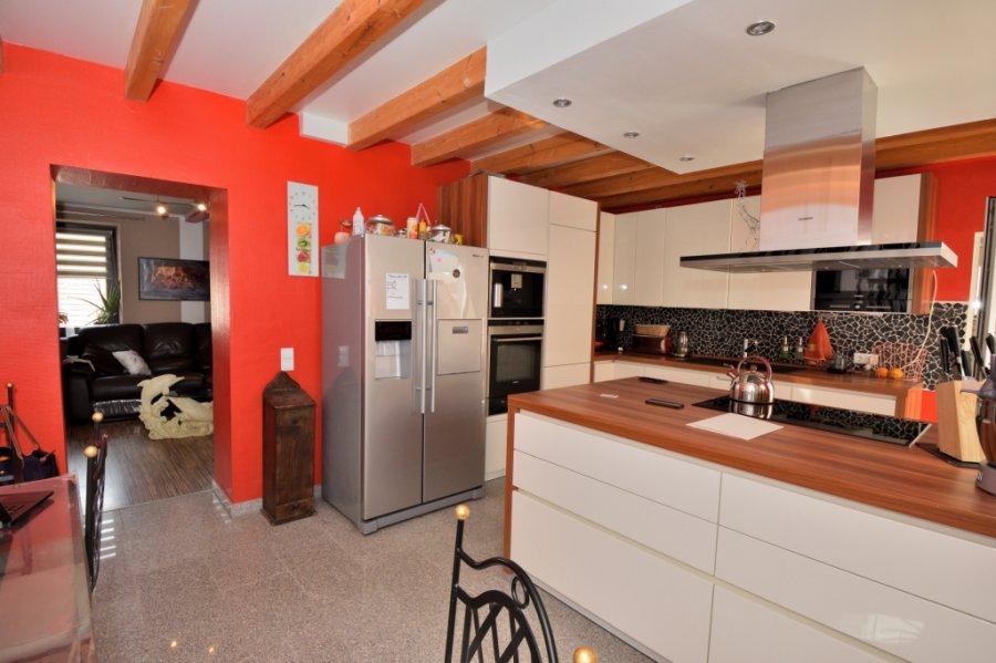 reihenhaus kaufen 0 zimmer 240 m² taben-rodt foto 3