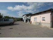 Local commercial à louer à Luxembourg-Merl - Réf. 5951864