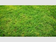 Terrain constructible à vendre à Beuveille - Réf. 7115640