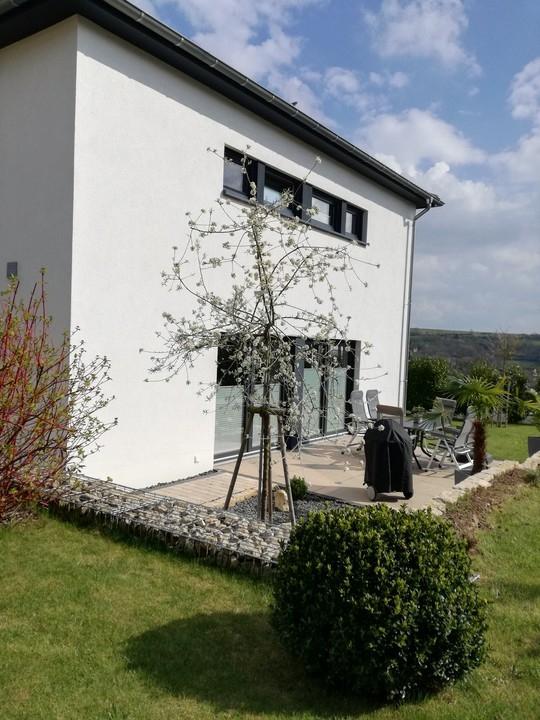 haus kaufen 4 zimmer 147 m² bitburg foto 5