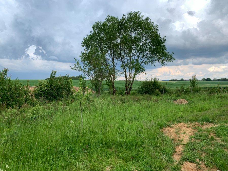 Terrain non constructible à vendre à Morfontaine