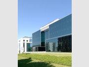 Bureau à louer à Luxembourg-Kirchberg - Réf. 6678664