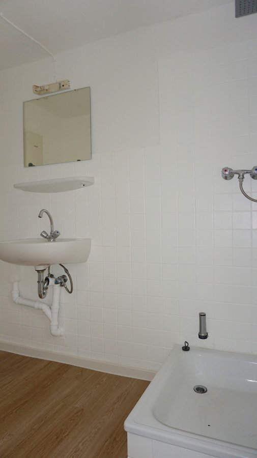 apartment for rent 1 room 20 m² minderlittgen photo 4