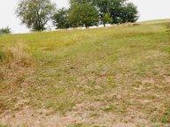 Terrain constructible à vendre à Baustert - Réf. 6100376