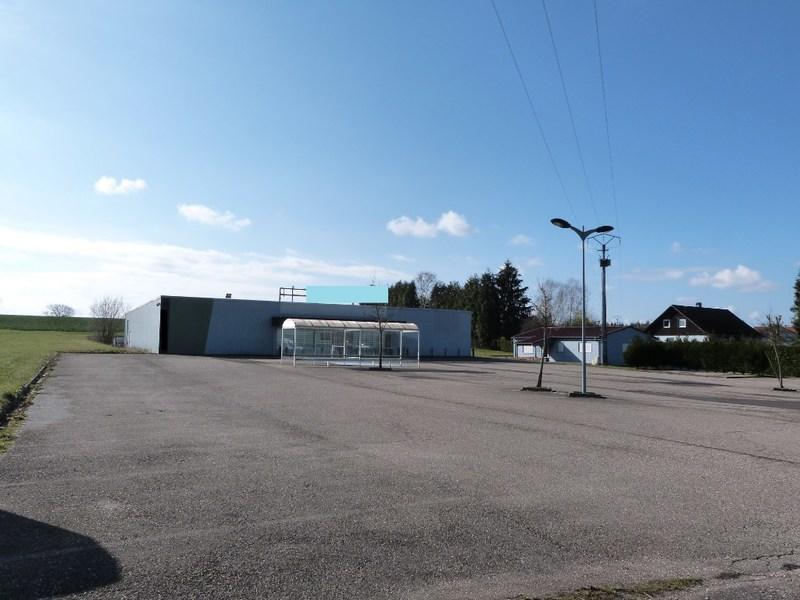 acheter entrepôt 6 pièces 922 m² rohrbach-lès-bitche photo 3