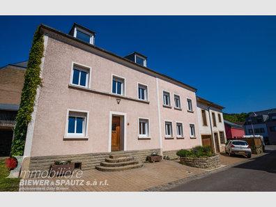 Haus zum Kauf 5 Zimmer in Rosport - Ref. 7021480