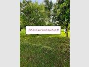Building land for sale in Niedergeckler - Ref. 6505896