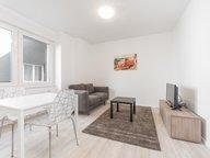 Wohnung zur Miete 1 Zimmer in Esch-sur-Alzette - Ref. 6682536