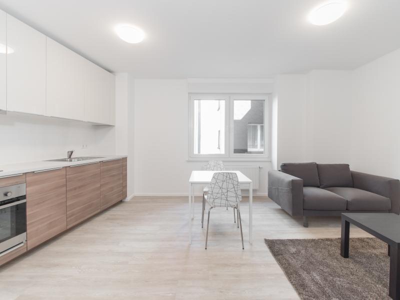 louer appartement 1 chambre 48 m² esch-sur-alzette photo 3