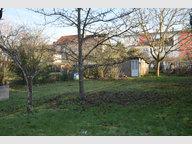 Maison à vendre F6 à Montigny-lès-Metz - Réf. 6637736
