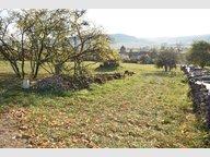 Terrain constructible à vendre à Removille - Réf. 6406584