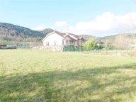 Maison à vendre F6 à Saint-Dié-des-Vosges - Réf. 6268856