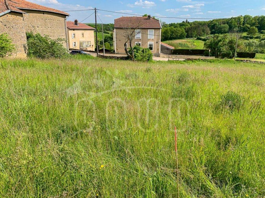 acheter terrain constructible 0 pièce 951 m² mercy-le-bas photo 1
