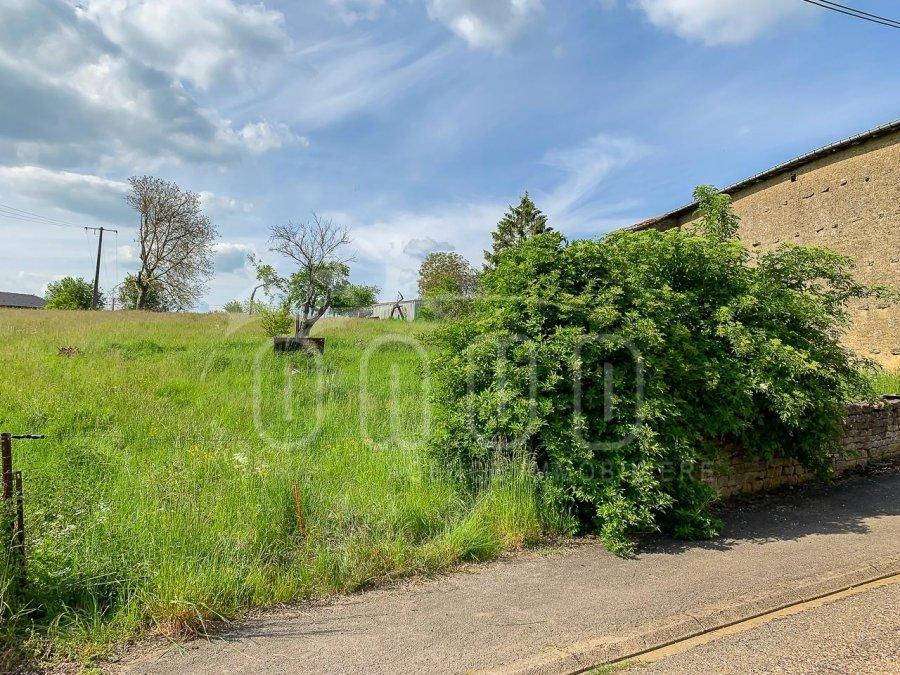 acheter terrain constructible 0 pièce 951 m² mercy-le-bas photo 4