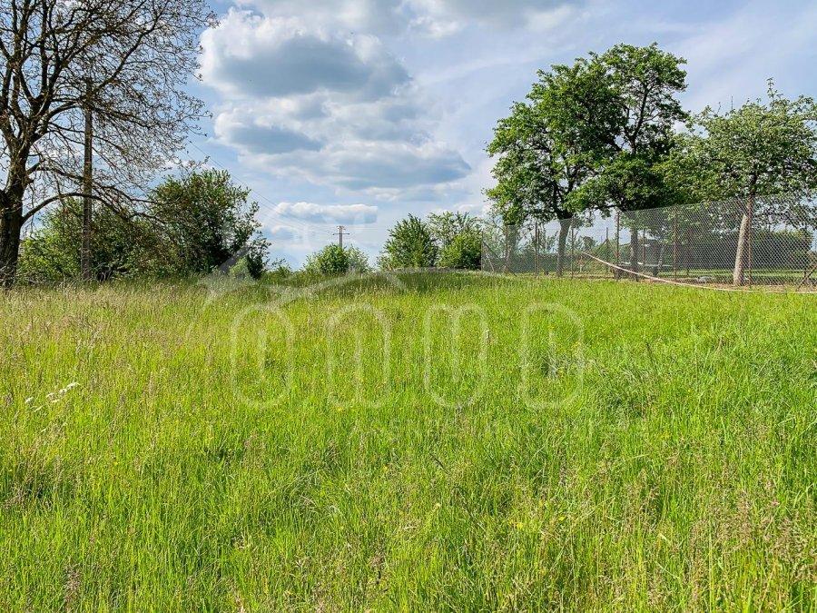 acheter terrain constructible 0 pièce 951 m² mercy-le-bas photo 6