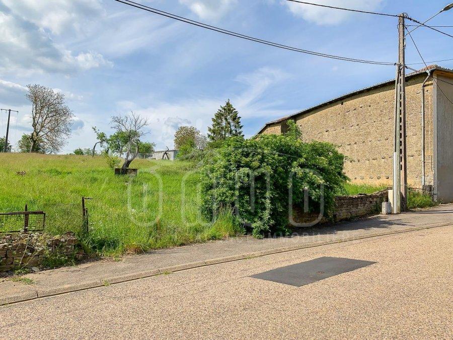 acheter terrain constructible 0 pièce 951 m² mercy-le-bas photo 3